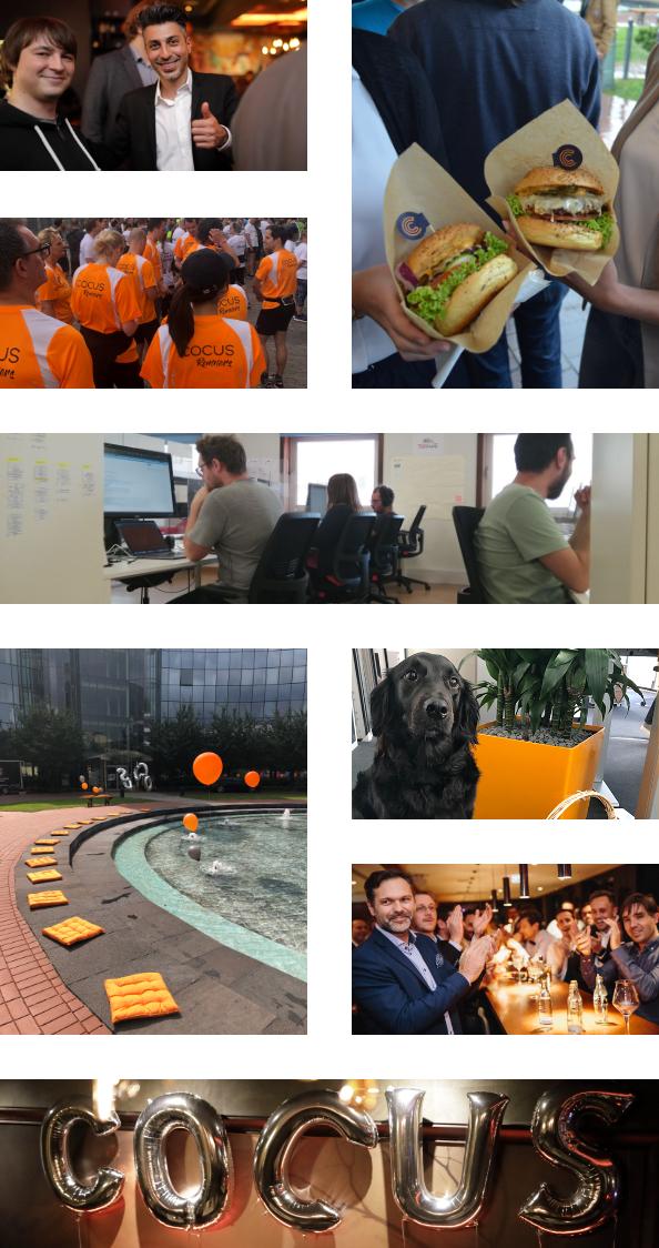 cocus-wir-sind-ein-team-collage-mobile